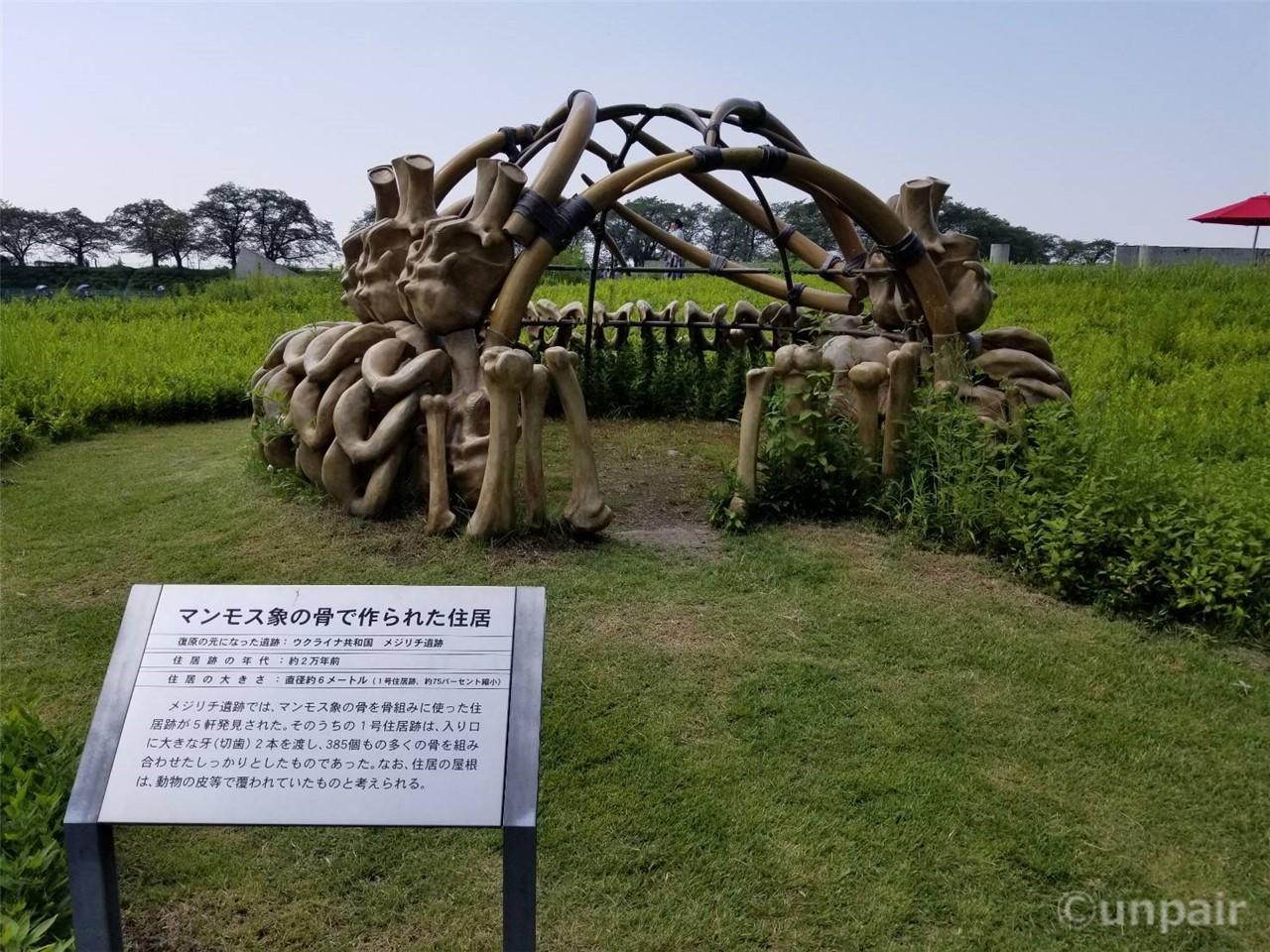 マンモス象の骨で作られた住居