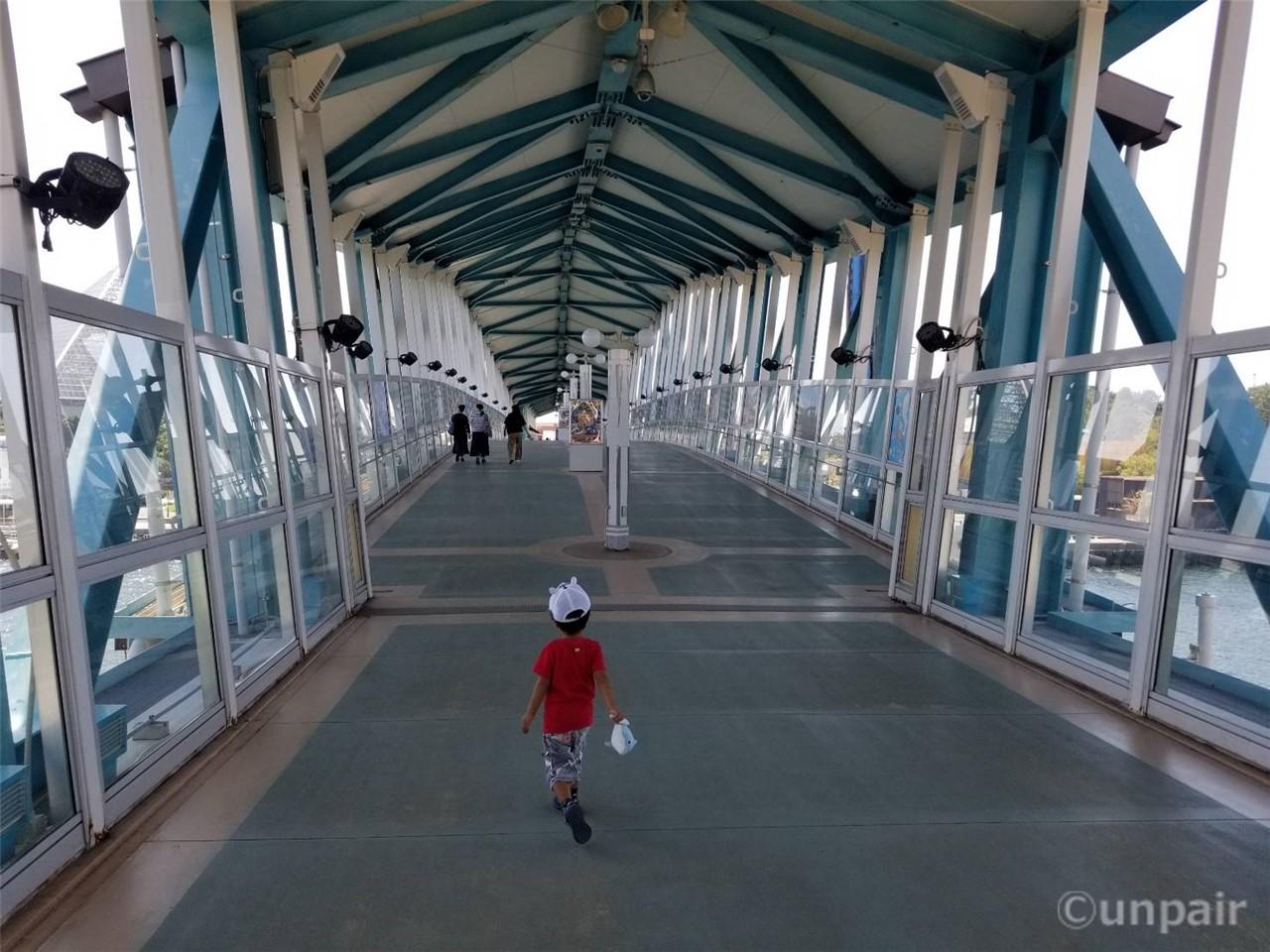 水族館と遊園地